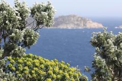 Auf-dem-Weg-zum-Cap-Lardier